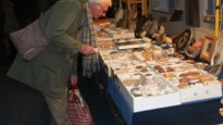De grootste fossielenbeurs van België en andere toppers in de Kempen