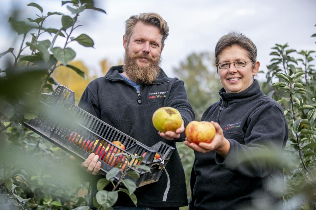 """Hoebenschot geeft vergeten appels en peren tweede leven: """"De eetbare tuin is helemaal terug"""" - Gazet van Antwerpen"""