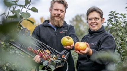 """Hoebenschot geeft vergeten appels en peren tweede leven: """"De eetbare tuin  is helemaal terug"""""""