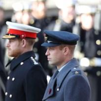 Prinsen Harry en William weer samen gezien