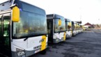 Vandaag weinig trams en bussen door staking