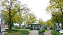21 zieke lindebomen op dorpsplein worden gekapt