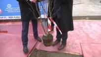 VIDEO. Eerste steen gelegd van nieuwbouwproject vzw Hof ter Welle in Sint-Niklaas