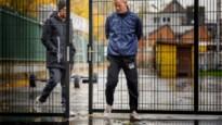 Van timing gesproken: Wouter Vrancken oefent vandaag met KV Mechelen tegen Genk