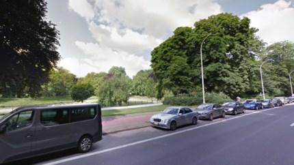 Stad legt grasdallen aan op parkeerplaatsen rond Stadspark voor betere waterinfiltratie