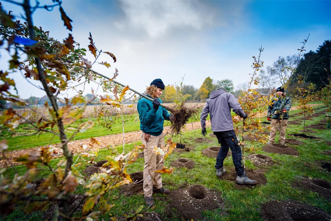Kleuters en leerlingen planten buurtplek aan (Heist-op-den-Berg) - Gazet van Antwerpen