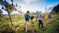 Kleuters en leerlingen planten buurtplek aan