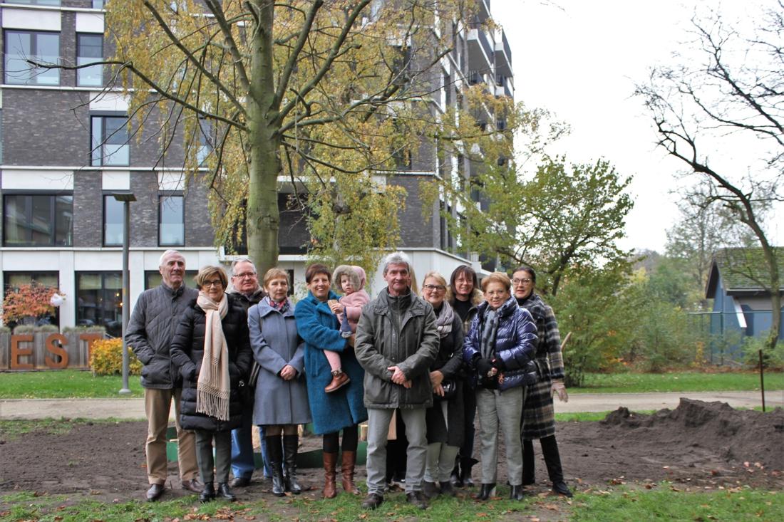 Bewoners betalen mee voor grotere boom (Lier) - Gazet van Antwerpen