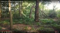 Natuurpunt stapt naar Raad van State om 2 hectare groot Parkbos te redden
