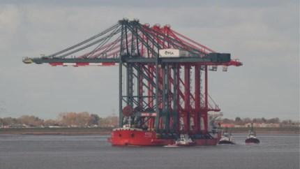 Spectaculair: grootste containerkranen in Antwerpse haven komen per schip aan