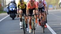 """Ook van Aert, Van Avermaet en Stuyven trekken voor de klassiekers op hoogtestage: """"Het risico waard"""""""