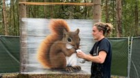 Jonge graffitikunstenaar toont kunnen op Putteke Winter in De Ster