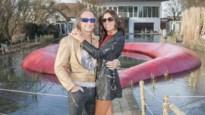 'Steenrijk straatarm' is eigenlijk afgelopen maar toch zendt VTM ophefmakende aflevering met miljonair Jan Kriekels uit
