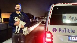 """Inspecteurs halen """"acrobatische toeren"""" uit om hondje te redden"""