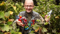GETEST. 10 tuinscharen getest: onze tuinexpert merkt dat goedkoop ook goed kan zijn