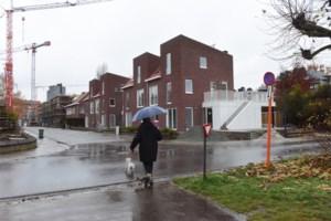 Turnhout investeert in mensen, wegen, gebouwen en… een eekhoornbrug