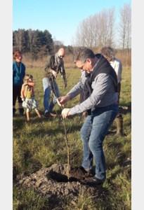 """Puurs-Sint-Amands tweede Antwerpse gemeente die Bomencharter tekent: """"Gaan voor minstens 50.000 nieuwe bomen"""""""