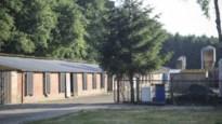 Kippenboer veroordeeld voor dodelijk ongeval van leverancier
