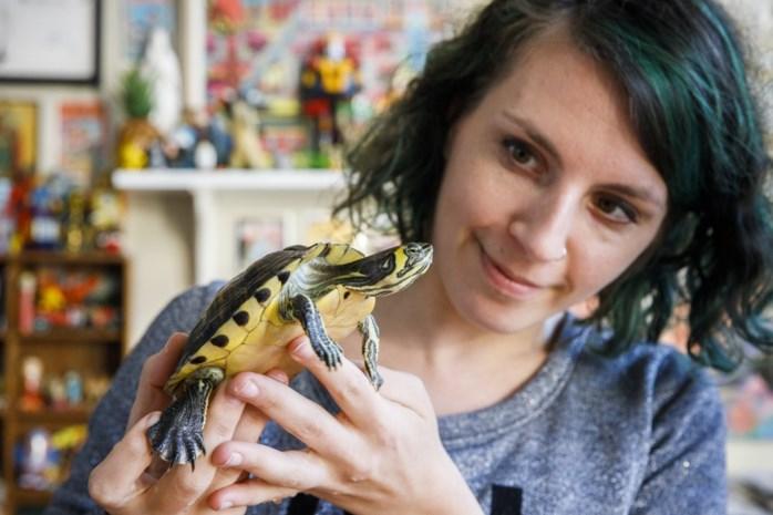 """Anneke vindt schildpadden in kartonnen doos op Turnhoutsebaan: """"Schaam u diep, eigenaar!"""""""