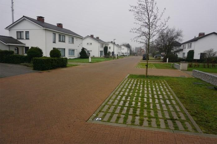 Stad valt in de (beton)prijzen met heraanleg Zilverberk- en Leeuwerikstraat