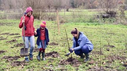 """Vrijwilligers planten 1.200 bomen in de Wilgernis: """"Vrijbroekpark is een van de mooiste plekken ter wereld"""""""