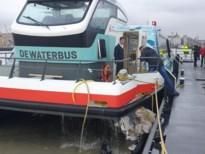 Achttien gewonden bij botsing Waterbus: parket start onderzoek