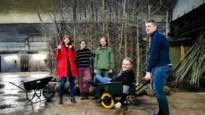Mechelaars planten 557 bomen aan in hun tuinen