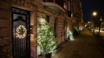 Straatcomité Eglantierlaan zet traditie voort: al 18 jaar 'die straat van de kerstbomen'
