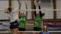 Droomfinale in het vrouwenvolleybal: bekerhouder Hermes Oostende treft landskampioen Asterix Beveren in eindstrijd