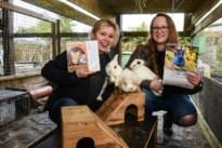 """'Adopteer een Konijn' schonk dit jaar al 250 konijntjes een nieuwe thuis: """"Vaak per twee, want deze dieren houden van gezelschap"""""""