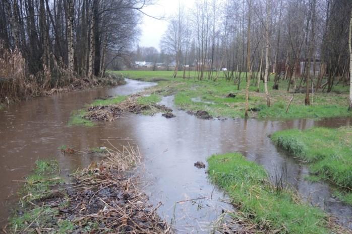 Dan toch geen nieuwe woonwijk in overstromingsgebied langs Kleine Nete? Gouverneur vernietigt plannen voor elf woningen