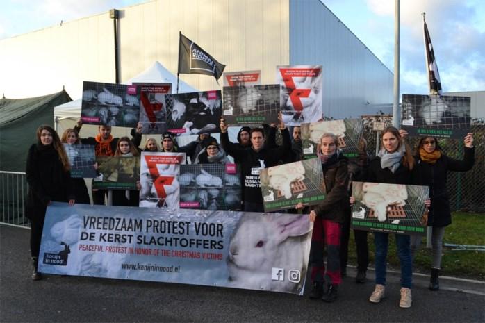 Actievoerders Konijn in Nood kamperen nog tot kerstdag aan slachthuis
