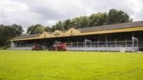 Nieuwe hoofdtribune Berchem Sport laat nog jaren op zich wachten