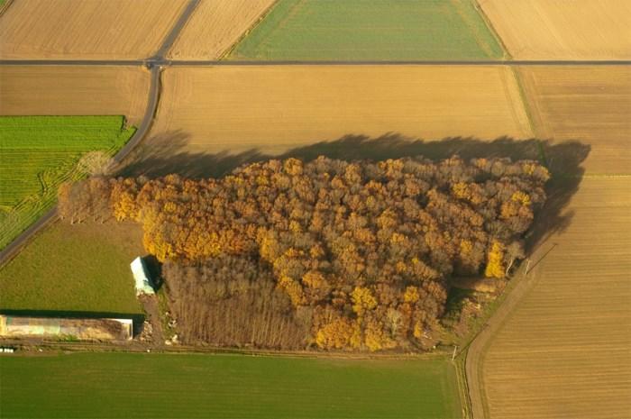 Code donkerrood voor het groen in Vlaanderen