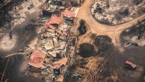 Bosbranden Australië beslaan al meer dan vijf miljoen hectare: land moet nog weken wachten op regen