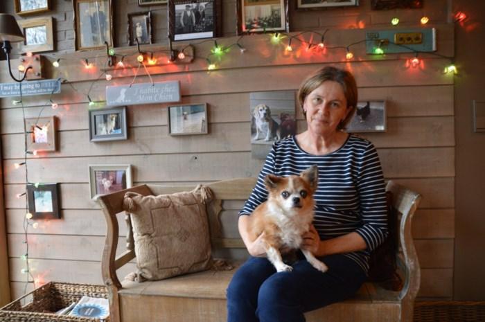 """Herplaatsingsdienst Harten-Diefjes geeft honden en katten tweede kans: """"We hebben een passie voor sukkelaars"""""""