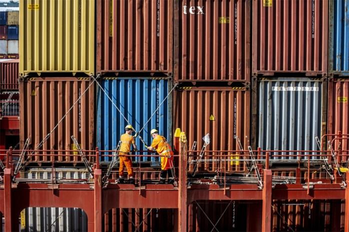 """UAntwerpen en Cepa willen werk van containerkuipers draaglijker maken: """"Zwaarste job bij havenarbeiders"""""""