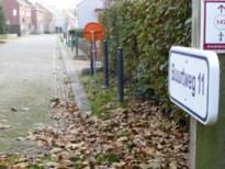 Vijf Willebroekse trage wegen worden erkend als buurtweg