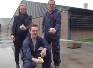 """Nederlands stikstofprobleem nekt kippenboer in grensdorp Ravels: """"Dit is niet eerlijk"""""""