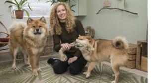 """Laura opent de Shiinu-shop: """"Honden gelukkig maken is mijn missie"""""""
