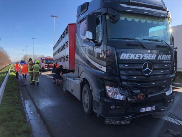 Tweede ongeval tussen vrachtwagens in file op E313 na eerdere kettingbotsing