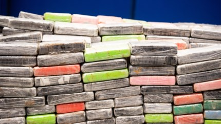 200 kilo cocaïne en wapenarsenaal gevonden bij inval in Bornemse loods