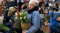 """Grote tulpenpluk aan Centraal Station: """"We zoeken een kleurencombinatie die op de kast past"""""""