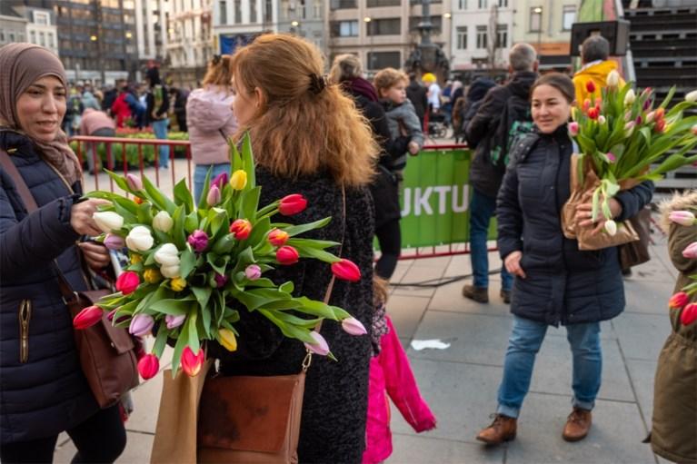 Grote tulpenpluk aan Centraal Station: 100.000 tulpen in amper drie uur allemaal weg