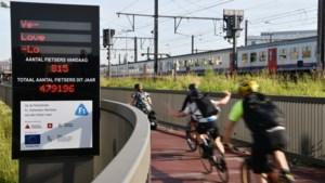De fietscijfers van 2019: jongste vijf jaar 30 procent meer fietsers in provincie Antwerpen