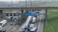 Grote hinder op Antwerpse Ring door ongeval met drie vrachtwagens en twee wagens