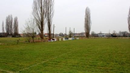 """Schepen wil stedelijk ruimtelijk beleidsplan voor Lint: """"Op termijn komen er tweeduizend Lintenaren bij"""""""