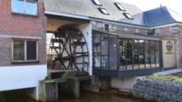 Watermolen draait als in glorietijd: domein groeit uit tot recreatief-toeristisch hart van Zuiderkempen