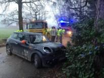 Autobestuurster gewond na knal tegen boom