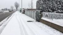 Discussie over neerslag in de Kempen: was het sneeuw, gekristalliseerde mist of nog iets anders?